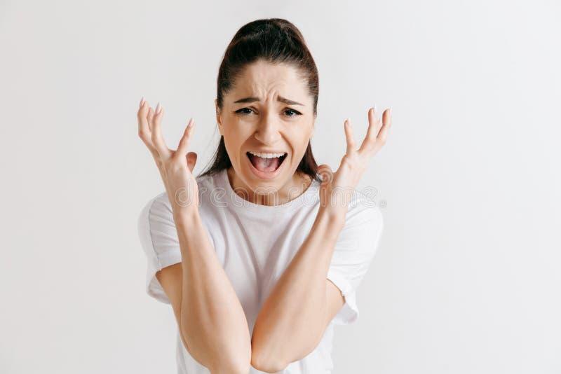 年轻情感恼怒的妇女尖叫在灰色演播室背景 免版税库存照片