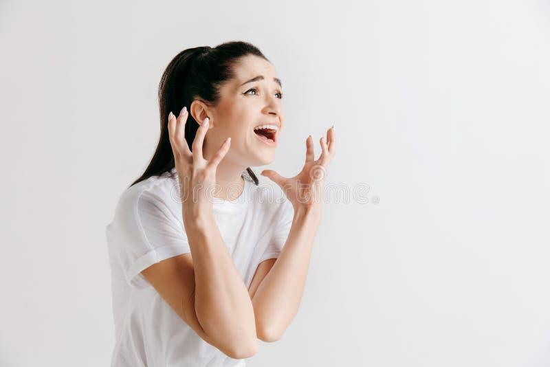 年轻情感恼怒的妇女尖叫在灰色演播室背景 图库摄影