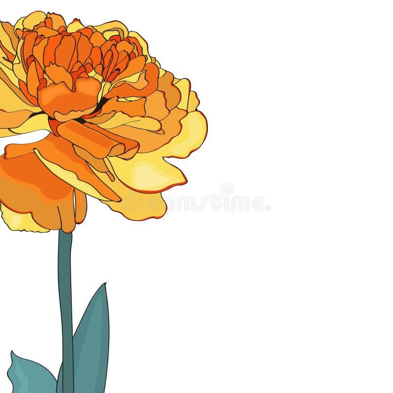 Żółta tulipanowa elegancka karta Wiosna dekoracyjny bukiet Mała kwiecista girlanda royalty ilustracja