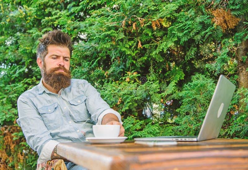 当坐与膝上型计算机时,供以人员有胡子的行家做饮料咖啡的停留并且认为 人喝咖啡松弛大阳台 免版税库存图片