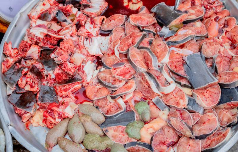 很多切片在铝水池的鲶鱼以有很多它的血液 免版税库存图片