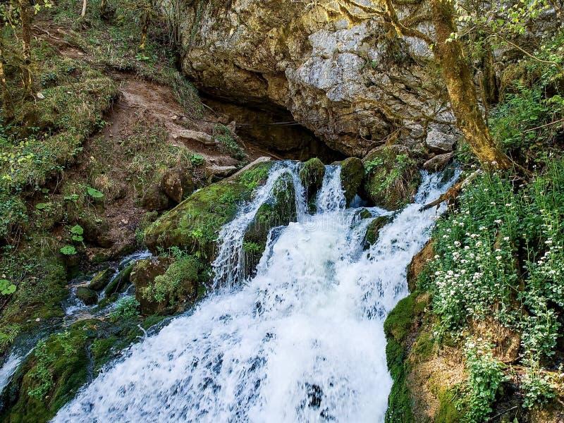 快速山河 瀑布 上游源头山河 Tumnin河是东部倾斜的最大的河 免版税库存照片
