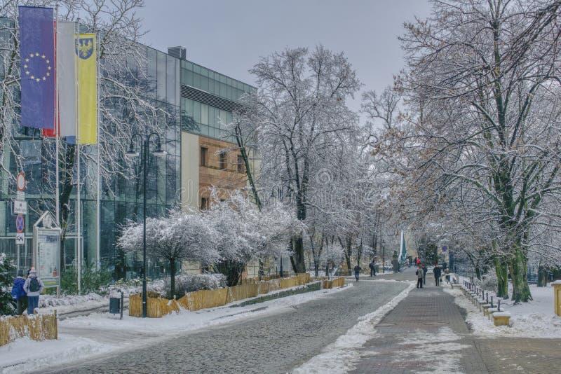 城市在冬天外套的 免版税库存照片
