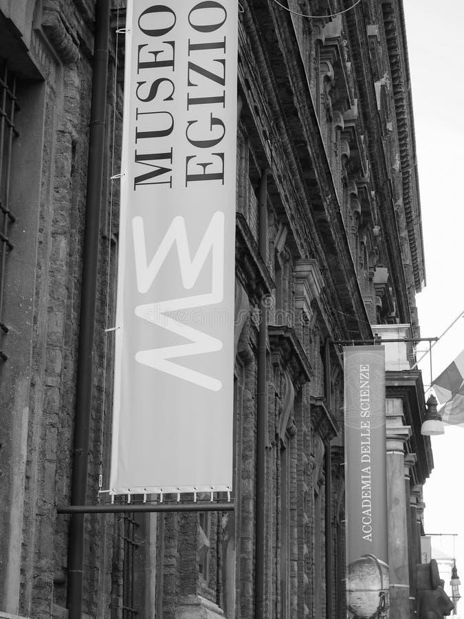 埃及博物馆(埃及博物馆)在黑白的都灵 库存图片