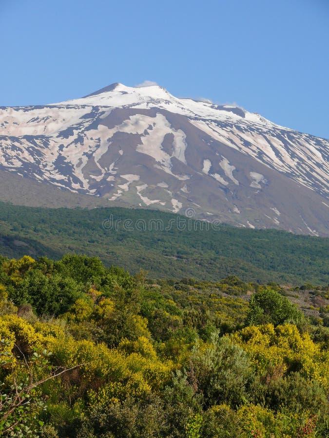 埃特纳火山山顶  库存照片