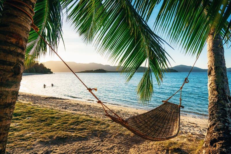在两棵棕榈树之间的吊床在日落的海滩 免版税图库摄影