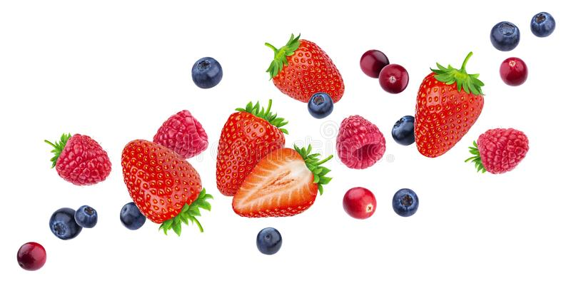 在与裁减路线的白色背景隔绝的飞行的莓果,不同的落的狂放的莓果,汇集 图库摄影