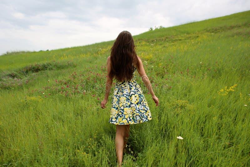 在一个绿色山沟,有长的棕色头发的一个年轻亭亭玉立的俏丽的女孩的夏天步行在一件黄色礼服sundress,享有生活 免版税库存照片
