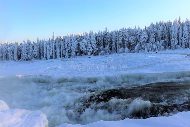 在一个美妙的冬天风景的Storforsen 免版税库存图片