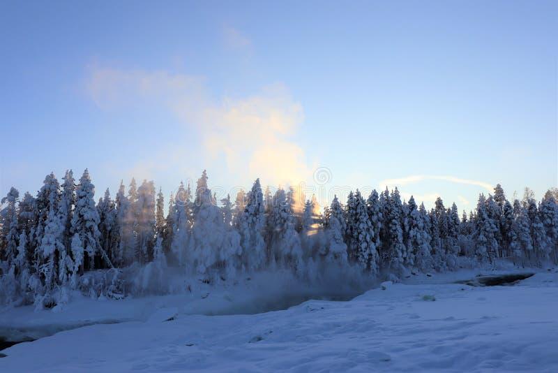 在一个美妙的冬天风景的Storforsen 免版税图库摄影
