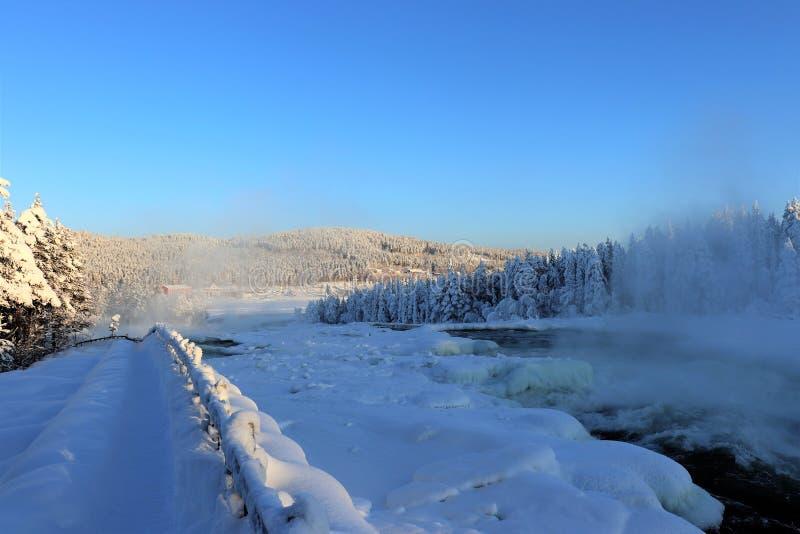 在一个美妙的冬天风景的Storforsen 免版税库存照片
