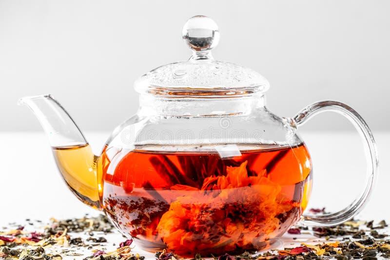 在一个玻璃茶壶的茶有一朵开花的大花的 茶壶用在白色背景的异乎寻常的绿茶用疏散干茶 库存图片