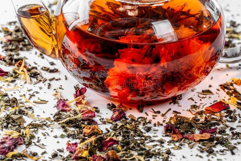 在一个玻璃茶壶的茶有一朵开花的大花的 茶壶用在白色背景的异乎寻常的绿茶用疏散干茶 库存照片