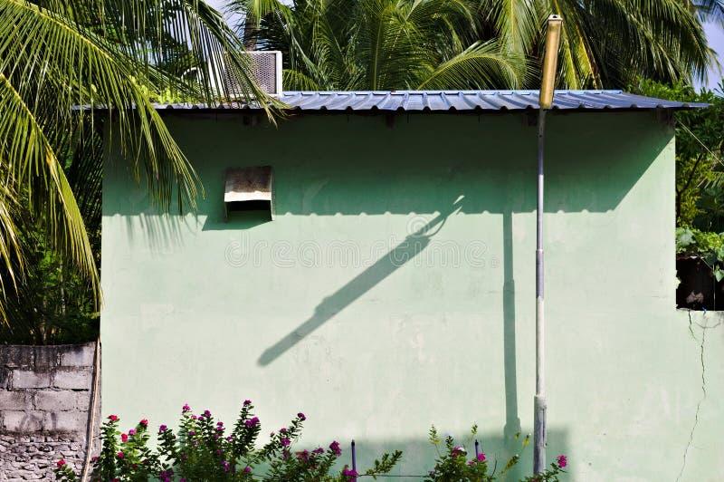 在一个被放弃的房子的街灯阴影有紫罗兰色花和棕榈叶的 库存图片