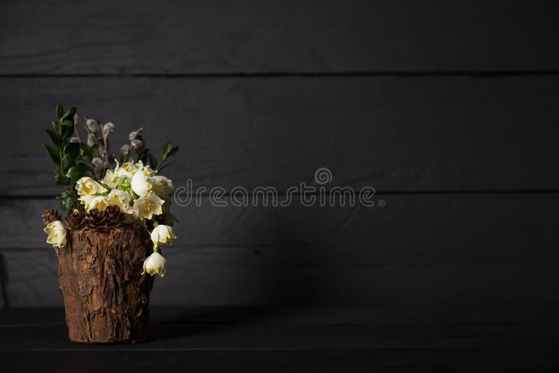 在一个装饰花瓶的Leucojum vernum,演播室射击 是第一春天雪花 国际妇女天题材  免版税图库摄影