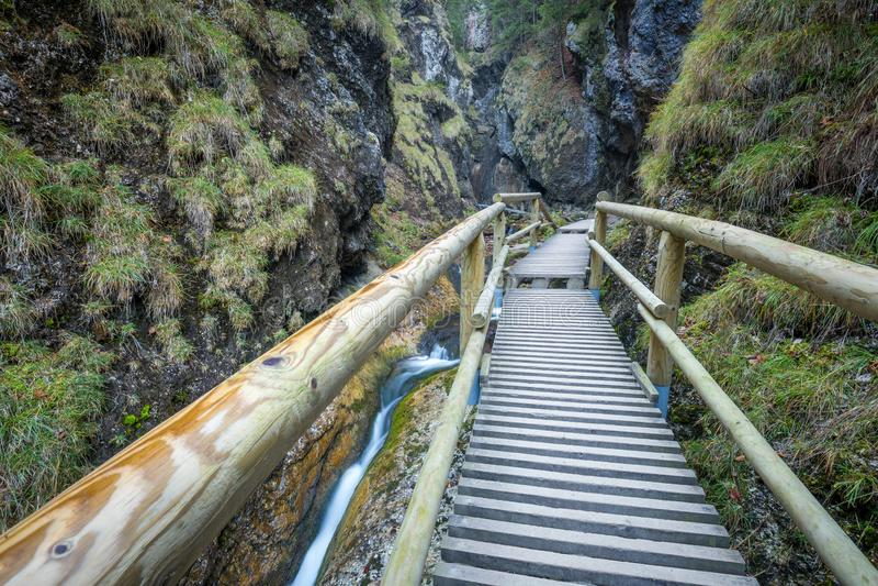 在一条小河的一个木人行桥在森林里 免版税库存照片