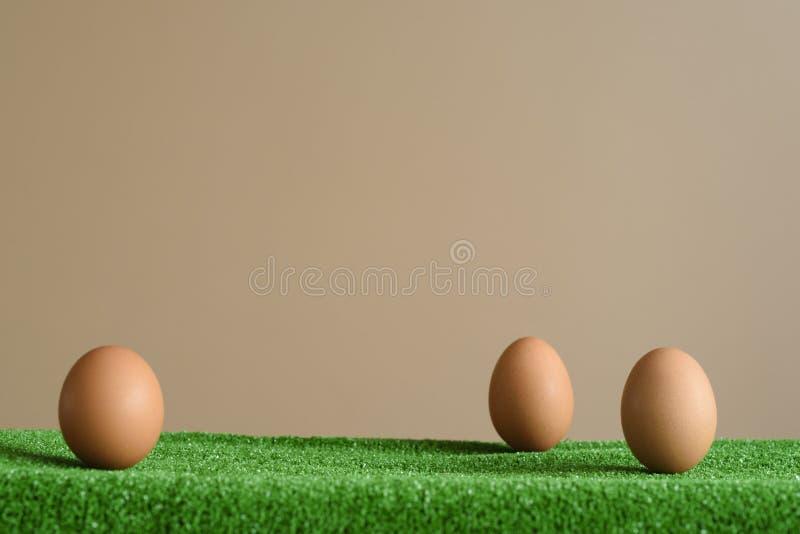 在一棵绿色纹理草的蛋装饰,有棕色背景 复活节假日 库存图片