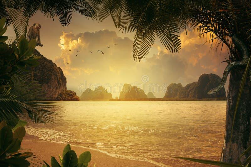 在五颜六色的日落期间的好的热带岸 免版税图库摄影