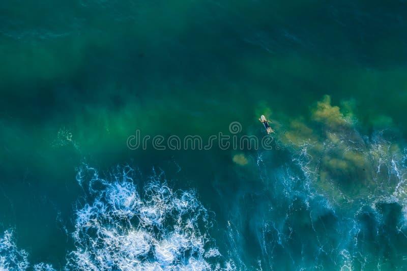 在他的冲浪板的冲浪者划船往波浪 免版税库存照片
