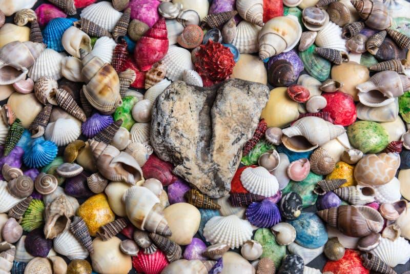 在壳床上的爱石头  免版税库存照片