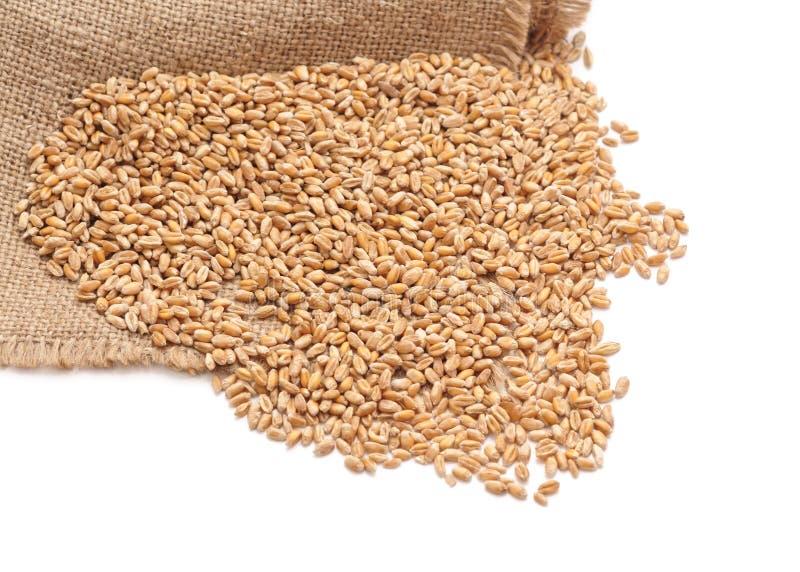 在大袋的麦子 库存照片