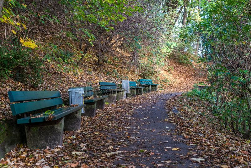 在奥林匹克公园附近的Luitpold公园在慕尼黑-巴伐利亚-德国 免版税库存图片
