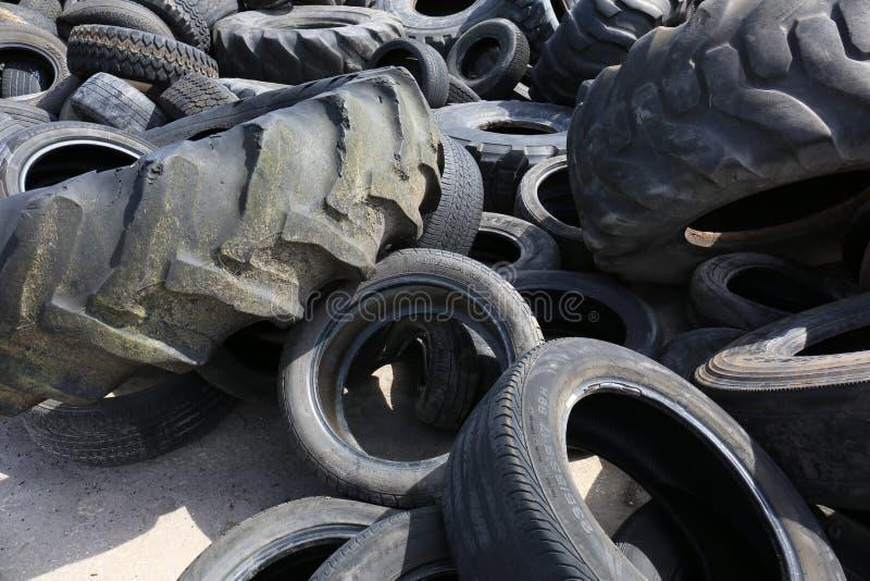 在将回收的垃圾填埋的老拖拉机轮胎 免版税库存图片