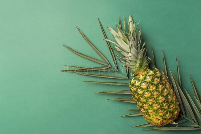 在尖刻的棕榈叶的成熟菠萝在深绿坚实背景 时髦样式充满活力的颜色 暑假热带题材 免版税库存照片