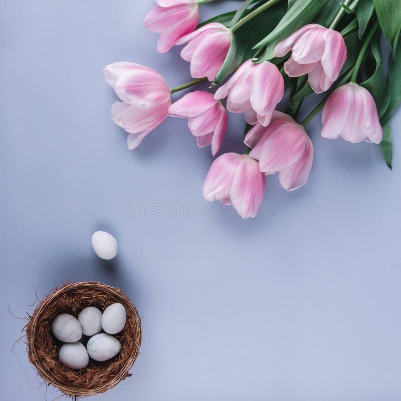 在巢的复活节彩蛋和在蓝色春天背景的桃红色郁金香花 看板卡愉快的复活节 顶视图,平的位置 库存图片