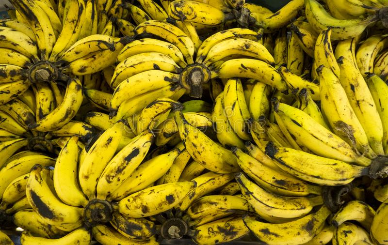 在市场、顶视图和defocus的成熟香蕉背景 库存图片