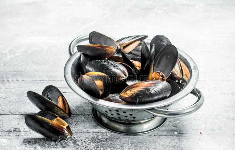 在平底深锅的新鲜的海鲜蛤蜊 免版税库存照片