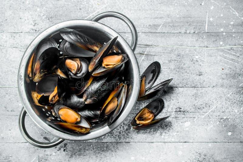 在平底深锅的新鲜的海鲜蛤蜊 图库摄影