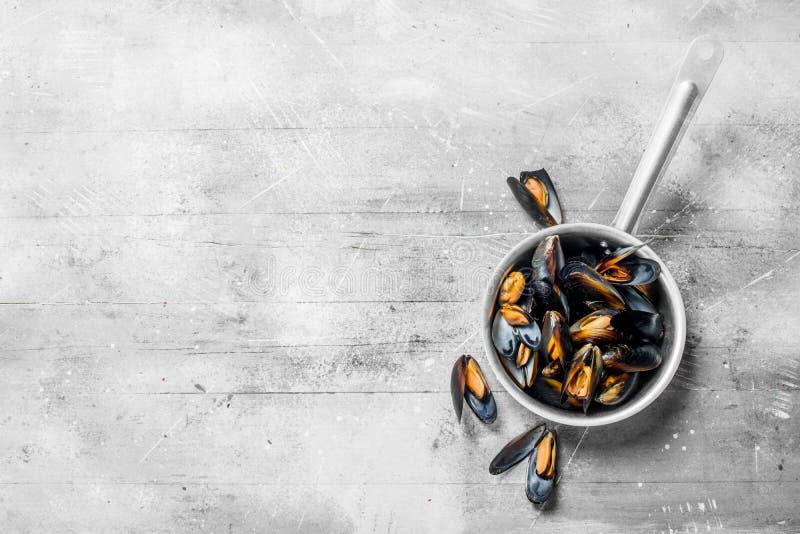 在平底深锅的新鲜的海鲜蛤蜊 库存照片