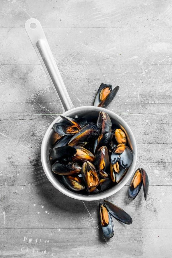 在平底深锅的新鲜的海鲜蛤蜊 免版税库存图片