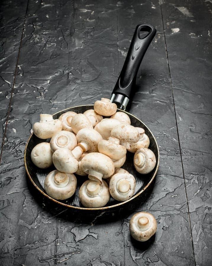 在平底锅的成熟蘑菇 库存照片