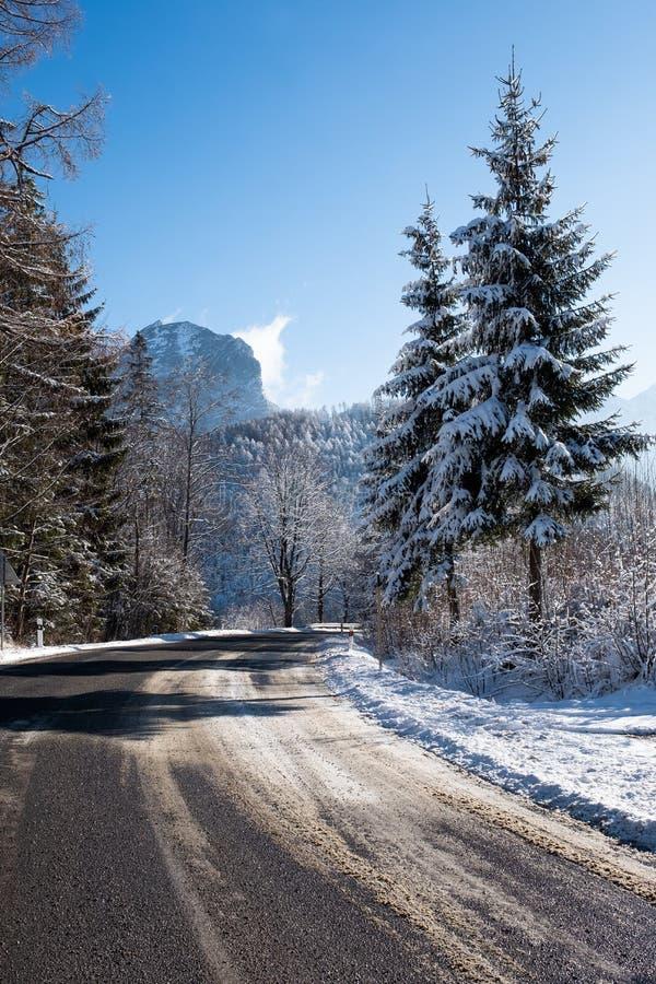 在冬天早晨山,Belianske Tatras,斯洛伐克的雪路 图库摄影