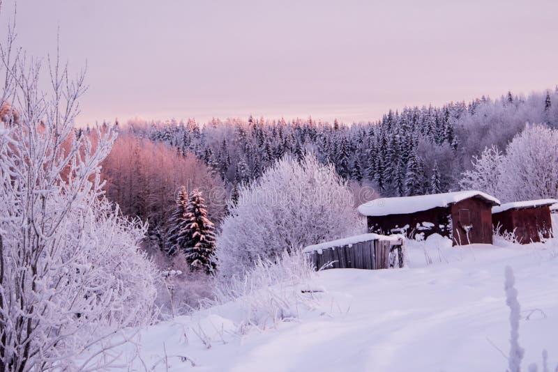 在冬天路附近的具球果森林 多雪美好的横向 免版税库存图片