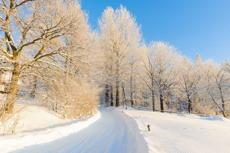 在冬天风景的旅游足迹 库存图片