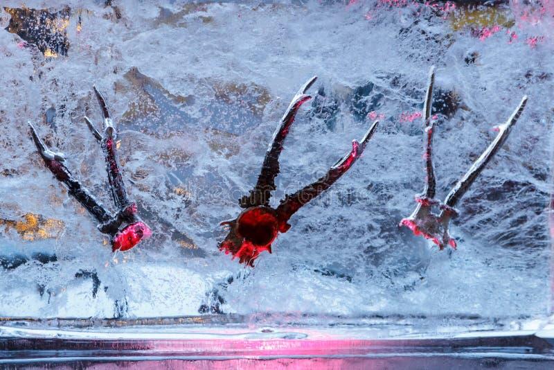 在冰里面的冰Sculpturehorns在节日在叶尔加瓦,拉脱维亚在2019年2月9日 免版税库存图片