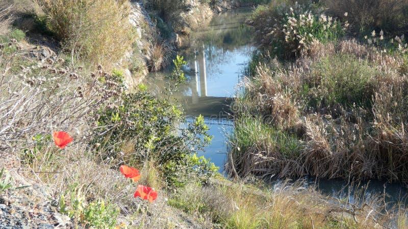 在河水的桥梁反射 免版税库存图片