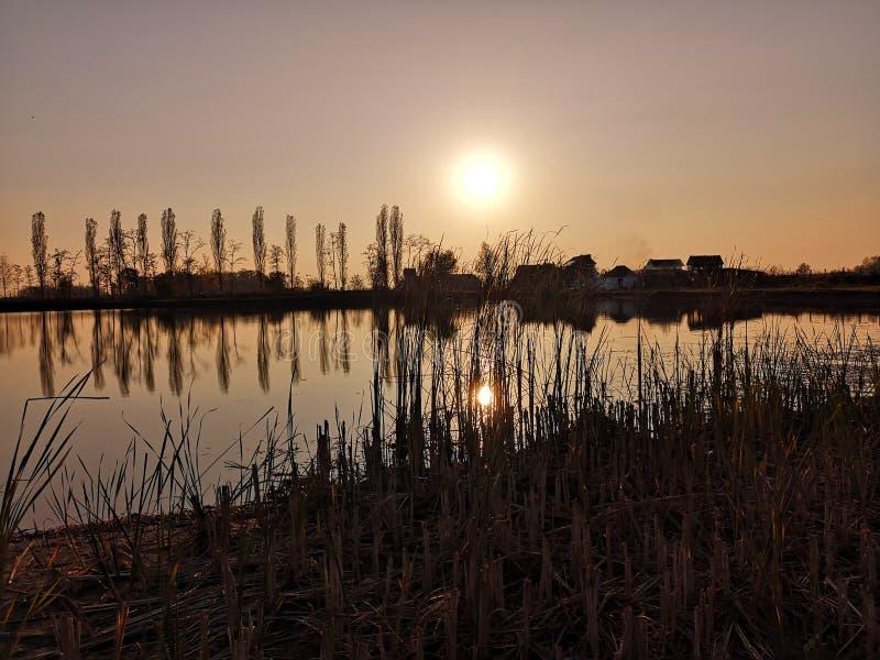 在河Sava的平安的水表面的美好的橙色日出 库存照片