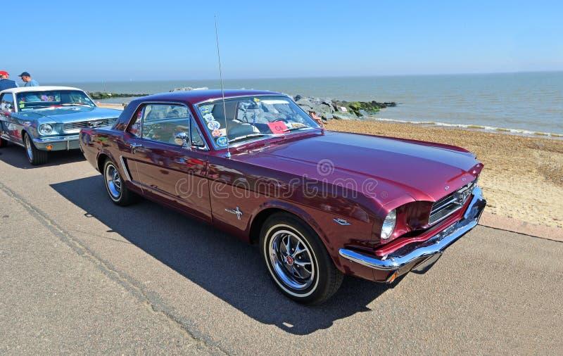 在沿海岸区停放的经典紫色Ford Mustang 免版税库存图片
