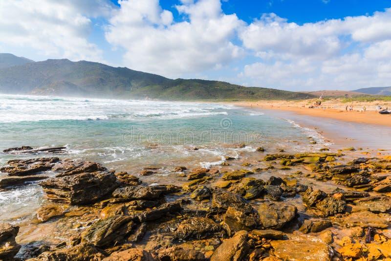 在波尔图耶老岛的海滩岸的波浪 库存图片