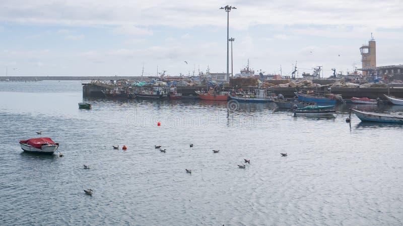 在波瓦-迪瓦尔津,葡萄牙历史的港口停泊的渔船  免版税图库摄影