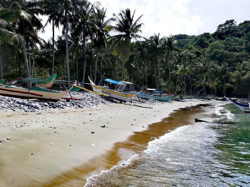 在海岸的Bangkas在热带民都洛,菲律宾 免版税库存照片