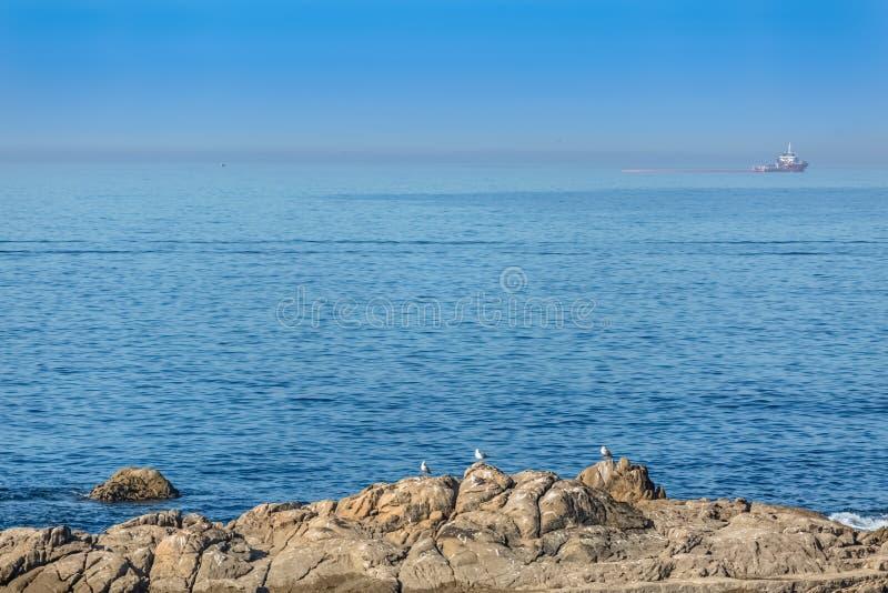 在海和岩石的看法与海鸥、小船在大西洋和天空作为背景 免版税图库摄影