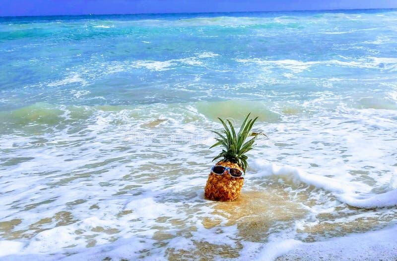在海浪的凉快的菠萝 免版税库存图片