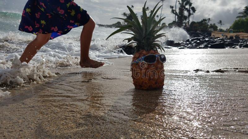 在海浪的凉快的菠萝 图库摄影