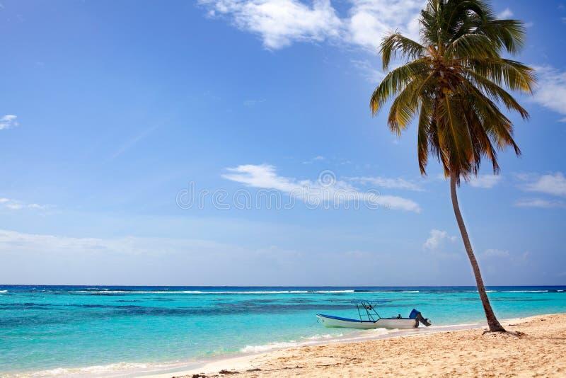 在海滩的一棵棕榈树与白色沙子、小船在岸,蓝色海和天空有云彩背景 免版税库存图片