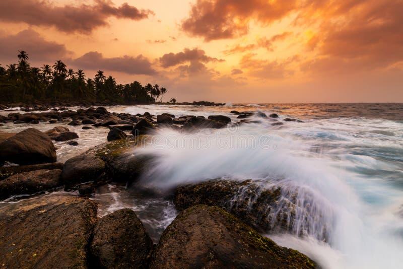 在海滩的美好的日落与在塞舌尔的棕榈 免版税库存图片